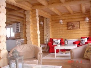 Beautiful cozy log chalet in the French Alps, Allos