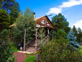 Log Cabin Home Vacation in the tall  Pine Trees w, Flagstaff