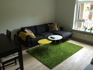 Lovely Copenhagen apartment with south facing balcony