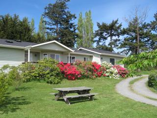 One of a kind 3 Bedroom View Home in Historic Coupeville