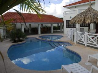 Grote Berg   Charming villa for 10 pers. with pool, Willemstad