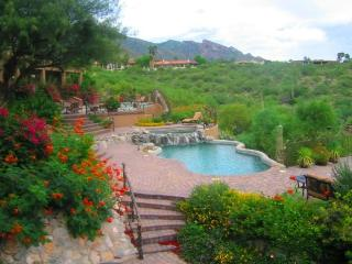 STUNNING MOUNTAIN SUNSET CITY VIEWS - MASTER SUITE, Tucson