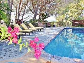 Private Paradise in Marin with Pool, San Rafael