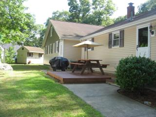 Side Yard w/ Patio, PICNIC TABLE-PROPANE GRILL-VOLLEY BALL NET IN BACK YARD