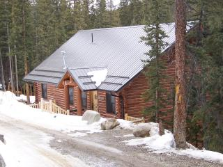 Gorgeous Mountain Getaway, 3 Bedroom/2 Bath For Up, Fairplay