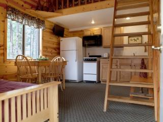 Affordable Cabin in Pines, Hill City