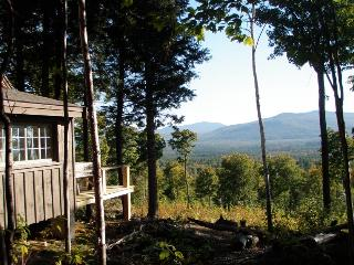 Secluded rustic cabin on 70 acres- mountain views!, Andover