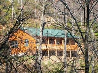 GREAT MOUNTAIN VIEW/CABIN/Reviews!, Maggie Valley