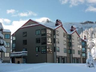 Sun Meadows Condo at Kirkwood 1 bdm ~ RA1481