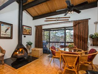 Herbage: 3 suites. Private Hot Tub. Disc Lift Tix*, Steamboat Springs