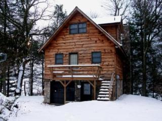 Eller's Tranquility -restful cabin with river view, Lansing