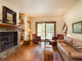 Terraces 1301 - 2 BR, 2 BA - Sleeps 4 - True Ski-in and Ski-out - The ski mountain is just steps away, Telluride