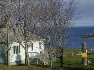 Ocean Breezes, Beach Fires, Marine Life . Experience it all at Shore to Sea Cottage, Guysborough