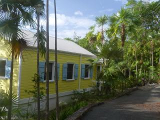 Palm Cottage-in gated community on Water Island