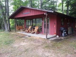 Relaxing Little Manistee River Cabin