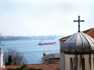 In the heart of Istanbul... With sea view...