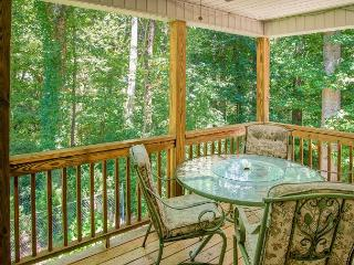 Sweet Hydrangea | 3BR, Close Access to Black Mountain | Fireplace