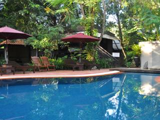 Jungle pool are with sun lounges and gardens