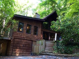 Cabin in Asheville Forest-15 min from Downtown!