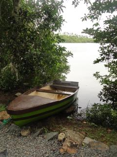 The paddle boat