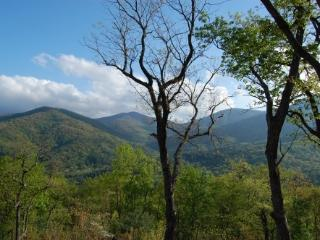 Private Mnt Views, Min to Vogel, Brasstown Bald, Blairsville