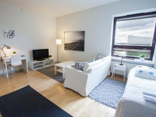 Spacious one-bedroom apartment in center of Turku