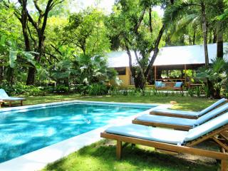 The Milarepa 3 acres pristine beachfront property, Santa Teresa