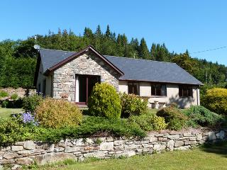 Detached, Great Views & Pet-friendly - 92926, Llanelltyd