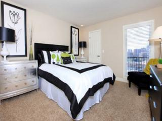 Great 1 BD in Downtown(CAMBRIA317), Kansas City