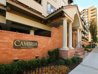 Great 1 BD in Downtown(CAMBRIA210), Kansas City