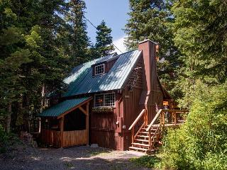 Laurel Hearth -Cozy Vintage Cabin with Hot Tub-wifi, Government Camp