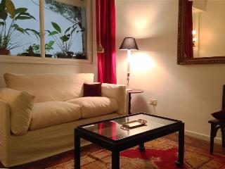 Classic 1BR Ap next to Alvear Hotel, Buenos Aires
