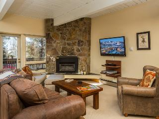 Ptarmigan House:Ski-In/Ski-Out. Discount Lift Tix*, Steamboat Springs