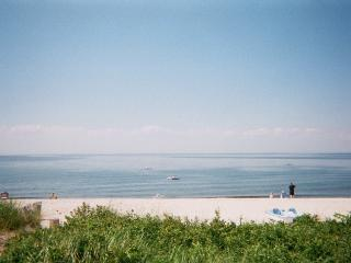 1BR Luxury Beach  Cottage Wineries Hampton North fork All Year 5 min Wineries Hamptons, Wading River