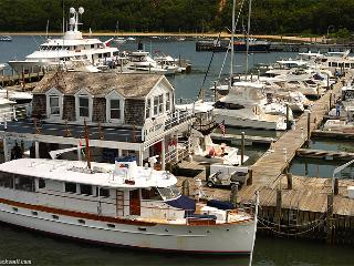 5BR Location! Harbor View Home Steps To Town Port Jeff No Car Needed! Boat Rentals!, Port Jefferson