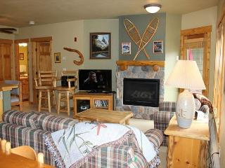 TF2619 Lovely Condo w/Fireplace, Wifi, Walk to Lifts, Common Hot Tubs, Keystone