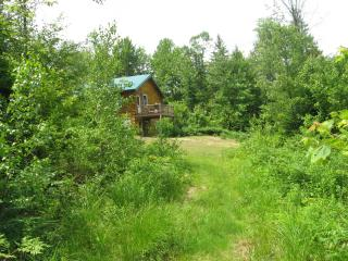 Secluded Log Cabin at Affordable Rate, Brownfield