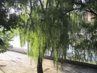 Luxury Apartment with River View -  Nis, Serbia