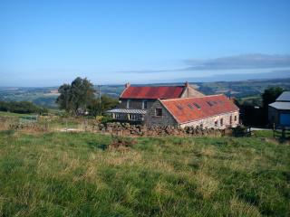 Greenlands Farm Holiday Cottages - Lapwing, Goathland