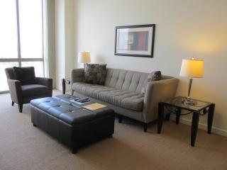 Lux 1 BR Apt at Reston Town Center