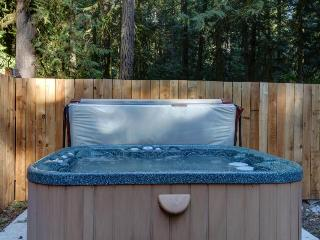 Private hot tub! Shop for skis, boards, and bikes!, Rhododendron