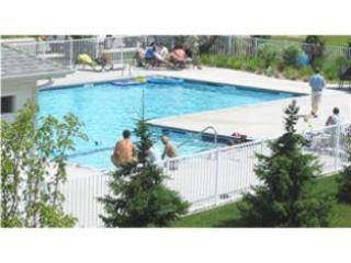 In-town Condo, Saugatuck Harbor View, Pool and Spa