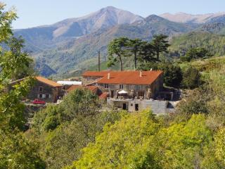 Old Pyreneeen Farmhouse With Beautiful Views, Prats de Mollo la Preste