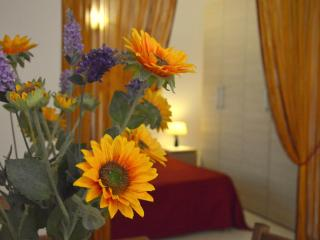 Large and Comfortable Studio two steps from center, Florence