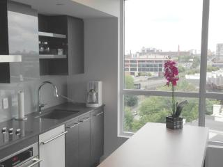 Downtown luxury furnished 2 Bdr condo and parking, Toronto