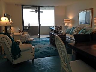 Luxury 3BR GulfFront 'Grateful to be at the Gulf', Hudson