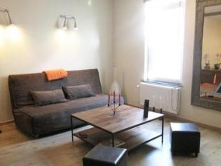 Eclectic 1 bedroom in central Brussels - 1378