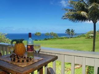 Kamahana 24: Great view and great price!  2br/2ba near beach paths and golf., Princeville
