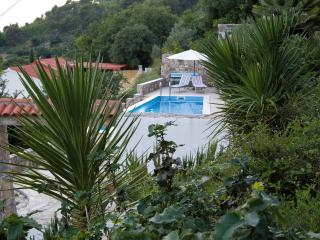 SPECIAL OFFER-Villa Blanka with sea view over pool, Split