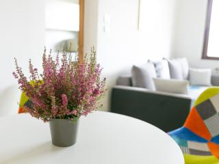 Bright & Big Gardenapartment 15 minutes to Vienna, Stockerau